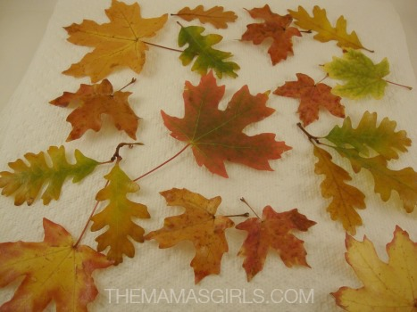 DIY Preserved Fall Leaves