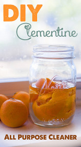 DIY Clementine all natural cleaner