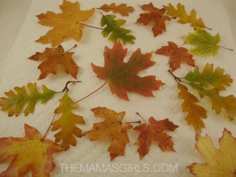 DIY Preserved Fall Leaves