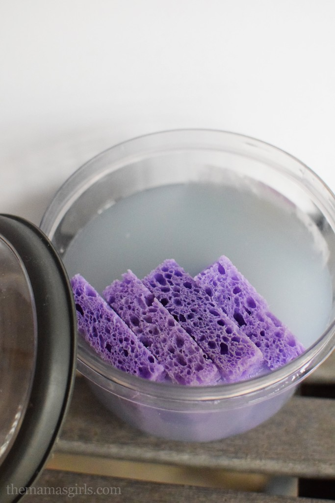 homemade dryer sheets with a sponge themamasgirls