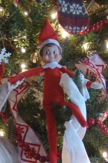 elf on a shelf hanging toilet paper on tree
