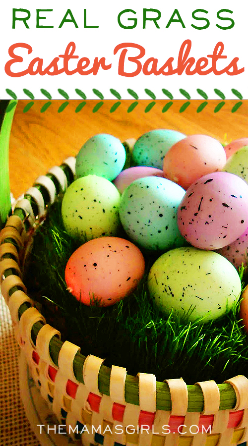 Real Grass Easter Baskets