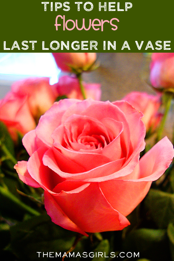 Tips to help flowers last longer in a vase