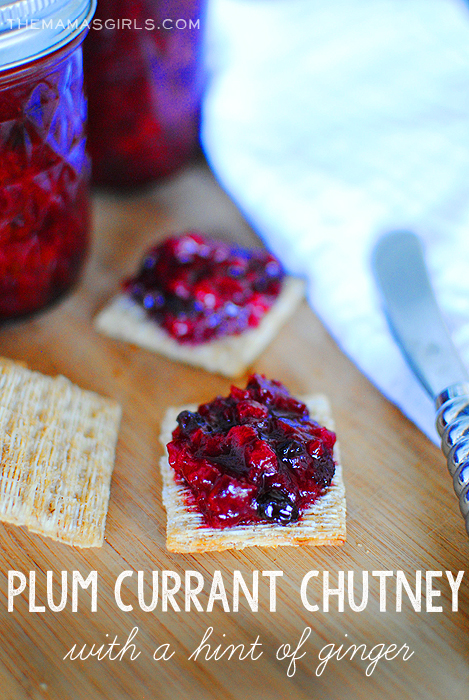 Plum Currant Chutney with a Hint of Ginger