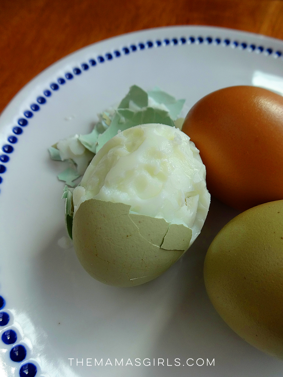 hard boiled egg tip