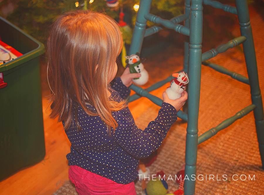 Live Christmas Tree Guide & Care Instructions 2