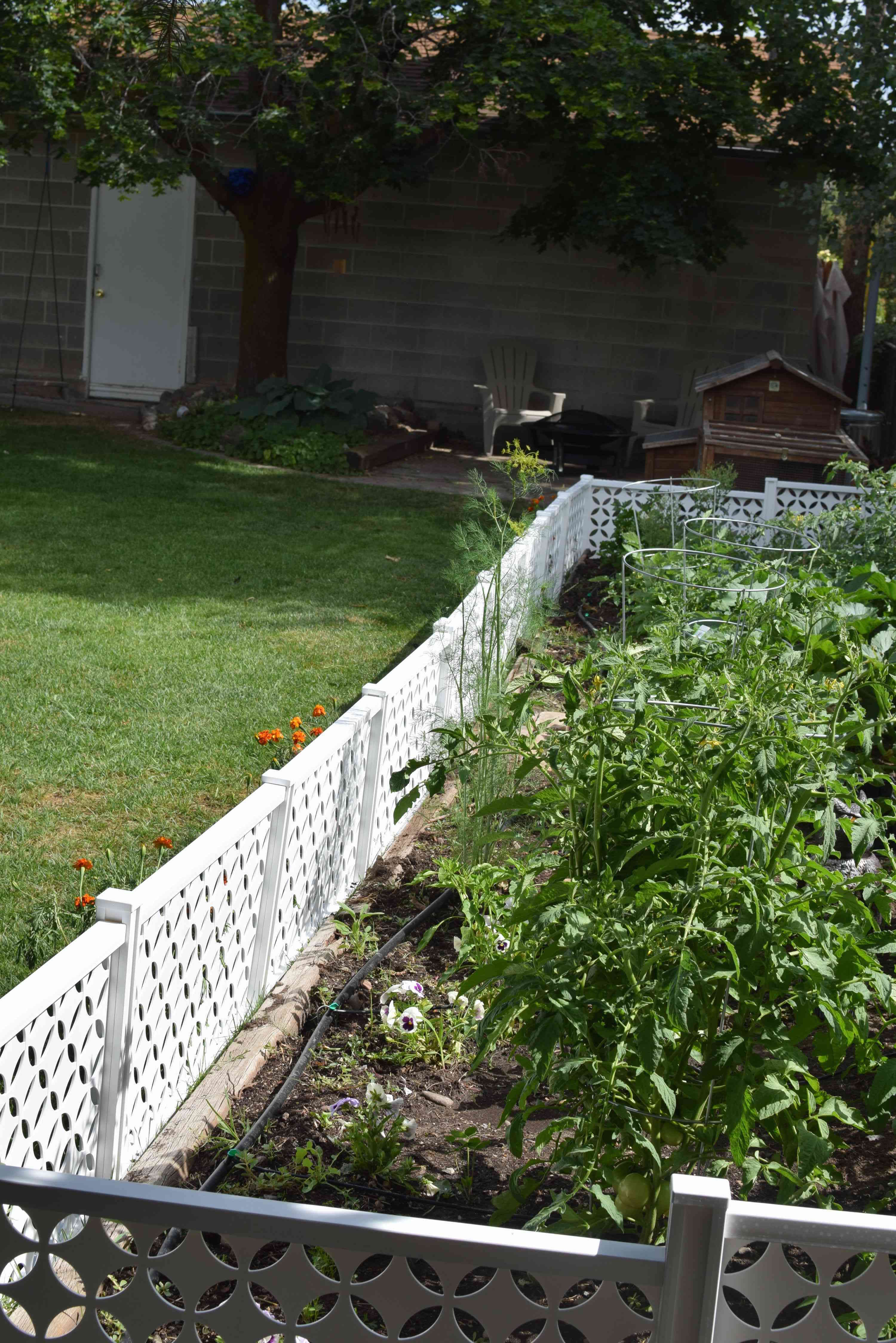 how to enclose a garden to protect from critters