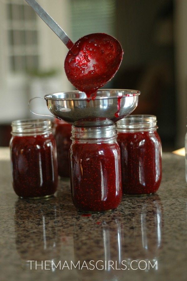 raspberry-pear-jam